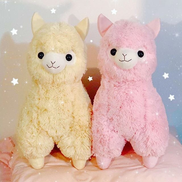 Instagram post of Pink and Yellow Amuse alpacas standing next to each other on a pillow with sparkly star graphics.