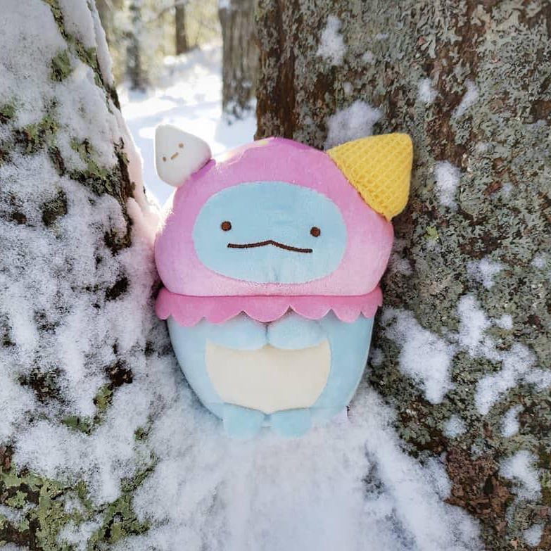 Instagram post of Tokage in ice cream costume in the snow by a tree.